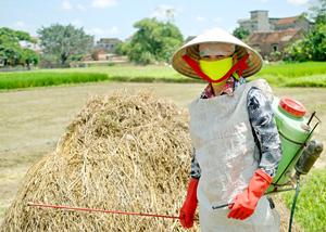 Bao ve thuc vat - Croplife Viet Nam