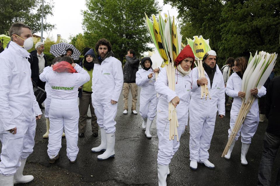 Một nhóm chống biến đổi gen và các thành viên của Green Peace chuẩn bị biểu tình chống ngô biến đổi gen năm 2014