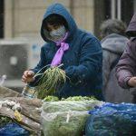 WTO & Liên Hiệp Quốc: Đảm bảo các chuỗi cung ứng không bị ảnh hưởng