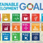 Liên Hợp Quốc kêu gọi hành động khẩn cấp nhằm nuôi sống dân số thế giới theo cách lành mạnh, công bằng và  bền vững