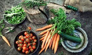 Cây trồng BĐG và cây trồng chỉnh sửa gen làm lung lay câu chuyện về nông nghiệp hữu cơ