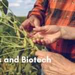 Đậu và Công nghệ Sinh học: Vì sao đậu nành là ngôi sao trong làng thực phẩm biến đổi gen?